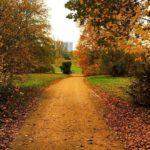 Herbstmusik – zum Entspannen und Eintauchen