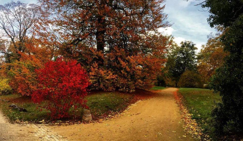 Jahreszeit Herbst in Potsdam