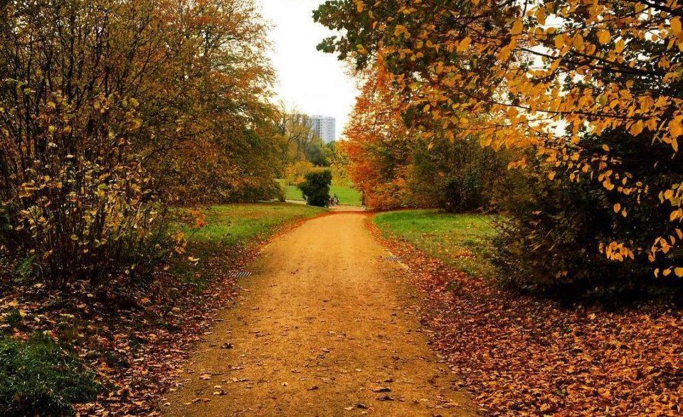 Jahreszeit Herbst - Herbstmusik